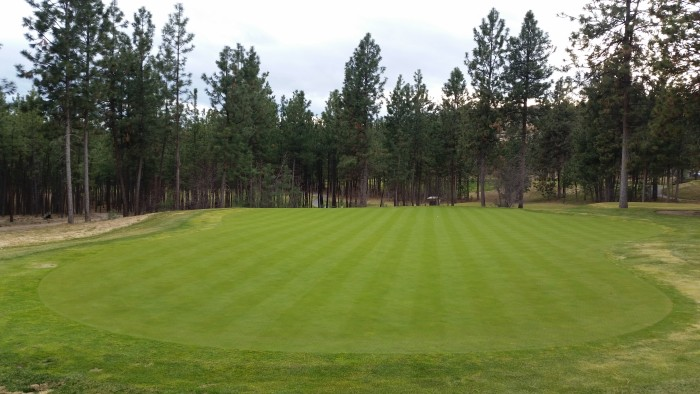 Bear Putting Green (Bent Grass Green) - March 2015